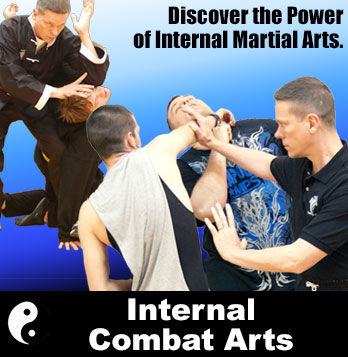 Internal Combat Arts Course