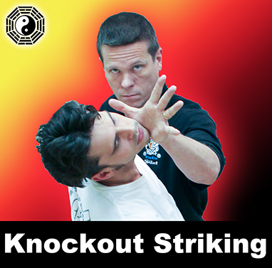 Knockout Power & Speed for Self Defense