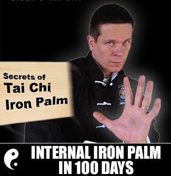 Internal Iron Palm in 100 Days